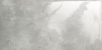 Напольная плитка Epoxy Graphite 1 598x298 / 10mm