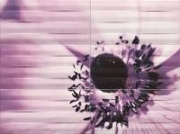 Настенный декор Maxima violet 2 898x673 / 8mm