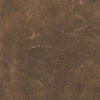 Напольная плитка Pulpis Brown 580 x 580 mm