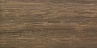 Настенная плитка Dorado bra? 448 x 223 mm