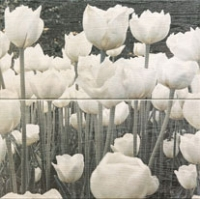 Настенный декор Sabaudia flower 448 x 448 mm