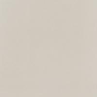 Напольная плитка Elementary dust MAT 598x598 / 11mm
