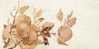 Декор настенный Enna apple 223 x 448 mm