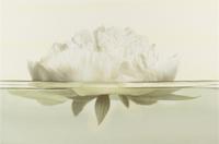Настенный декор Flora Peony 300 x 450 mm