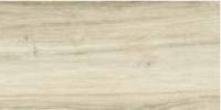 Напольная плитка Sherwood BE 300 x 600 mm
