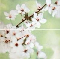 Панно Early Spring Pan Flow