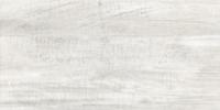 Laterizio Grys 30x60