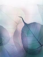 Vivid Colours Composition
